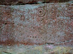 Ballochmyle cup and ring marks - Cup-and-ring mark stone at Ballochmyle, Mauchline