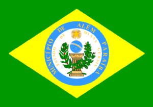 Além Paraíba - Image: Bandeira alémparaíba