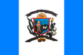 Bandeira pianco.PNG