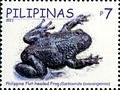 Barbourula busuangensis 2011 stamp of the Philippines.jpg