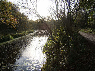 Barnsley Canal - Looking southeast along the canal and towpath
