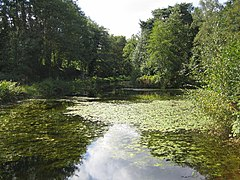 Basingstoke Canal near Brookwood - geograph.org.uk - 277509.jpg