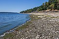 Beach across Gulf Island, Saltspring Island, British Columbia, Canada 01.jpg