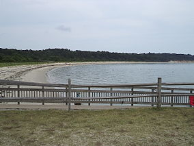 Beach and ocean at Kiptopeke State Park.jpg