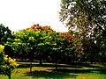 Beautiful garden towards the Arab Sarai - Humauyon's tomb.jpg