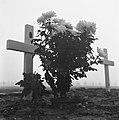 Begraafplaats Margraten, Bestanddeelnr 900-9971.jpg