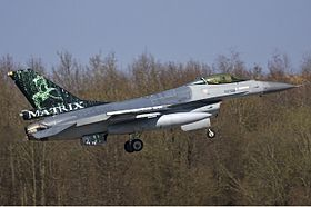 Un General Dynamics F-16AM Fighting Falcon belge