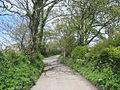 Bend in the road south of Tyddyn Watcyn - geograph.org.uk - 1288955.jpg