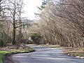 Bends in Common Road - geograph.org.uk - 1773153.jpg
