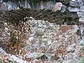 Beogradska tvrđava 0101 11.JPG