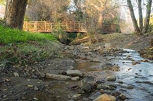 Berryessa Creek - Berryessa Creek Park, San Jose