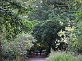 Big Wood - geograph.org.uk - 2603595.jpg
