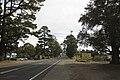 Bilpin NSW 2758, Australia - panoramio (11).jpg