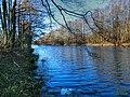 Black River - panoramio (7).jpg