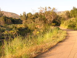 Black Star Canyon Road.JPG