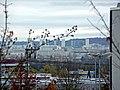 Blick über das Industriegebiet Hulb Richtung Mercedes-Benz Werk - panoramio.jpg