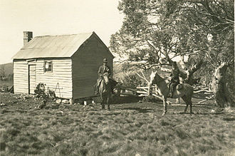 Bogong High Plains - Fitzgeralds hut in 1940