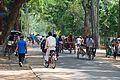Bolpur-Santiniketan Road - Birbhum 2014-06-28 5200.JPG