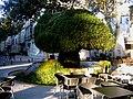 Bouches-Du-Rhone Salon-De-Provence Place Crousillat Fontaine Moussue 20102011 - panoramio.jpg