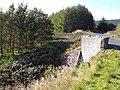 Bridge on the B709 - geograph.org.uk - 1542765.jpg