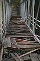 Bridge over Garden Pond - Jadavpur University - Kolkata 2015-01-08 2350.JPG