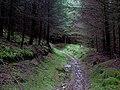 Bridleway from Abergwesyn descending into Cwm Tywi, Powys - geograph.org.uk - 1528875.jpg