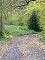 Bridleway near Broad Bridge - geograph.org.uk - 1589568.jpg