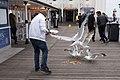 Brighton 2015 (18627093788).jpg
