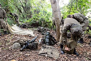 British Forces Brunei - Members of the Royal Regiment of Fusiliers taking down shelters before commencing the last day of live firing in the jungles of Brunei in 2016.