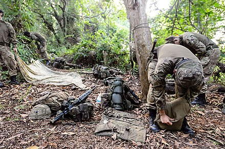 Members of the Royal Regiment of Fusiliers taking down shelters before commencing the last day of live firing in the jungles of Brunei in 2016.
