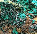 Brochantite-Malachite-282309.jpg