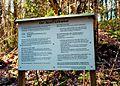 Buchholzer Forst 18.jpg