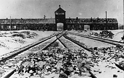 Bundesarchiv B 285 Bild-04413, KZ Auschwitz, Einfahrt.jpg