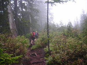 Buntzen Lake - Image: Buntzen lake trail