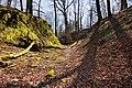 Burgruine-Hattstein-Halsgraben-JR-E-3741-2020-04-02.jpg