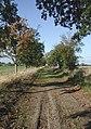 Burland Lane - geograph.org.uk - 593026.jpg