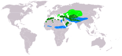 Buteo rufinus distribution map.png