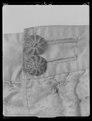 Byxor av vit sidenatlas. Buren av Karl X Gustav (1622-1660) vid kröningen 1654-06-06 - Livrustkammaren - 45350.tif