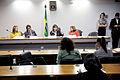 CMCVM - Comissão Permanente Mista de Combate à Violência contra a Mulher (18029009674).jpg