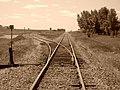 CN Tracks - panoramio.jpg
