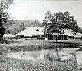COLLECTIE TROPENMUSEUM Het paleis van de gouverneur van de Molukken TMnr 60054959.jpg