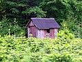 Cabana na floresta.jpg