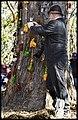 Caboolture Medieval Festival-54 (14790104570).jpg