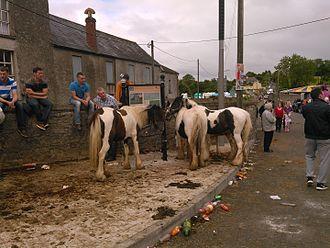 Cahirmee Horse Fair - Cahirmee Fair in 2015