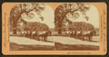 California Freight Wagon, from Robert N. Dennis collection of stereoscopic views.png