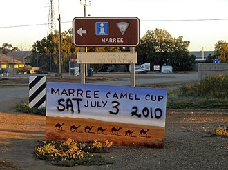 Marree, South Australia - Marree's Camel Cup