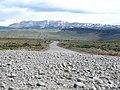 Camino de Puerto Natales a Torres del Paine - panoramio.jpg