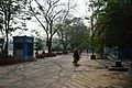 Campus Road - Jadavpur University - Kolkata 2015-01-08 2377.JPG