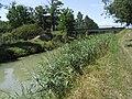Canal Mignon 007.jpg
