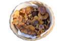 Cantharellus-amethystinus-1616-3.png